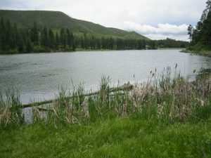 Fenton Lake