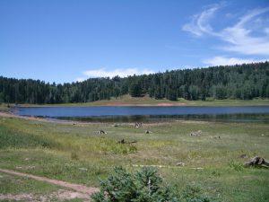 San Gregorio Lake
