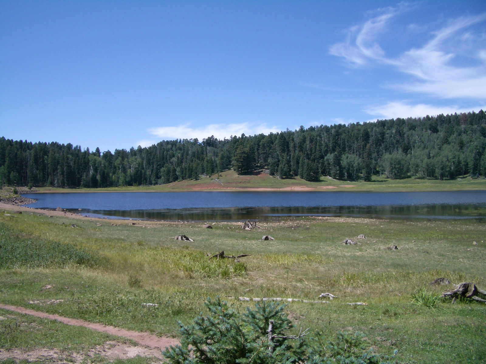 San gregorio lake jemez central jemez central for Nm fish stocking report