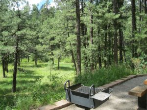 San Antonio Campground Is Lush And Green As Is All The Jemez