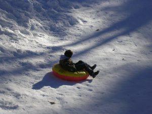 Snow Fun In The Jemez