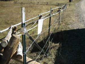 Mouse Fence With Signage